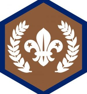 Chief Scout Awards